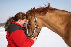 Stajnia PaTaTaj. Szkoła jazdy konnej